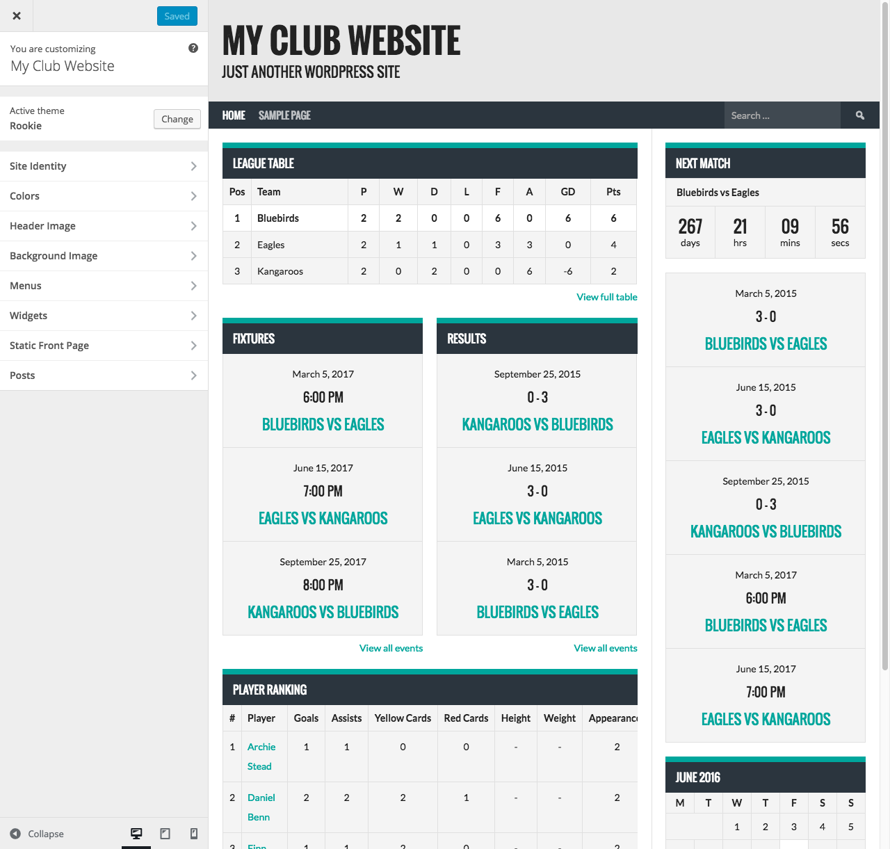 how-to-create-a-sports-website-customize-website-apperance2